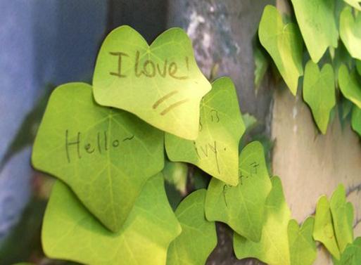 Leaf-it Ivy