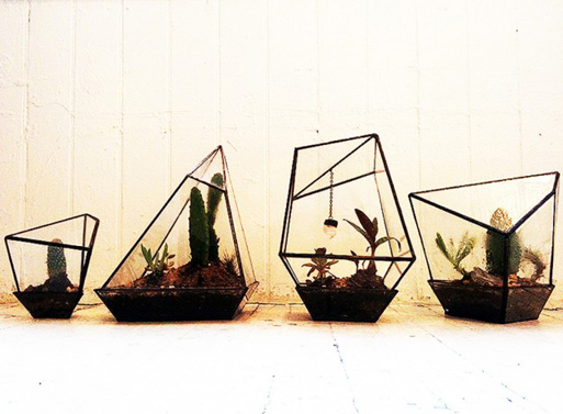 Geometric Terrariums from Assembly New York