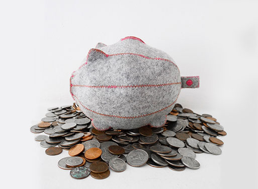 Feed Your Dreams Piggy Bank