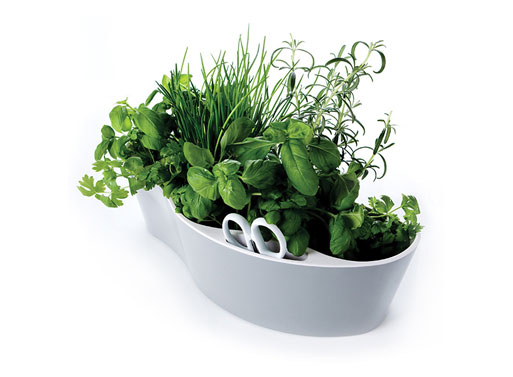 Royal VKB Herb Garden