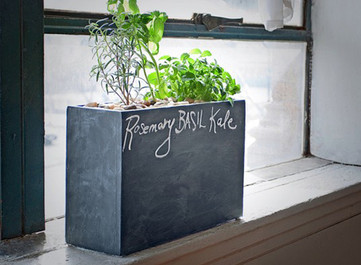 Modern Sprout Planter