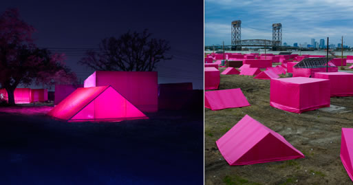 The Pink Project