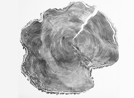 Tree Prints by Bryan Nash Gill