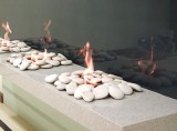 EcoSmart Fireplace