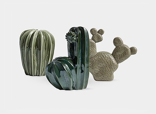 Hay Cacti
