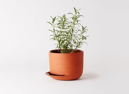 Herb Pots by Anderssen Voll for Mjolk