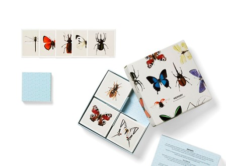 Insect Memory Game