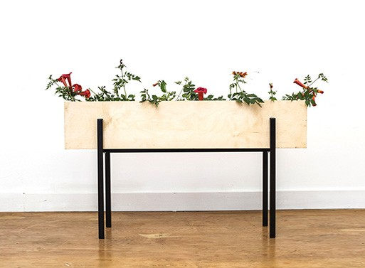 Linear Box Planter