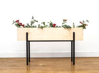 Linear Box Planter