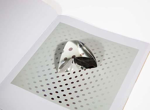 Prism Magnifier