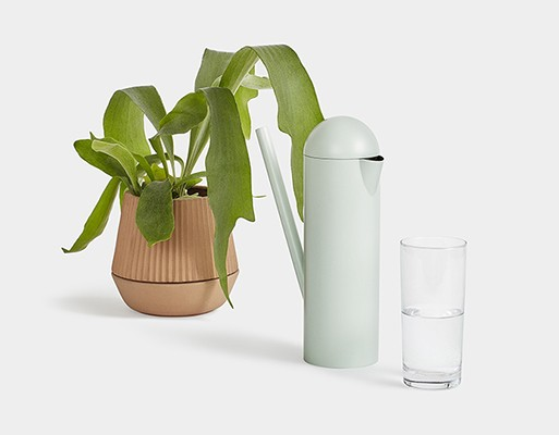 Deuce Pitcher/Watering Can