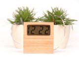 Bamboo Soil Clock