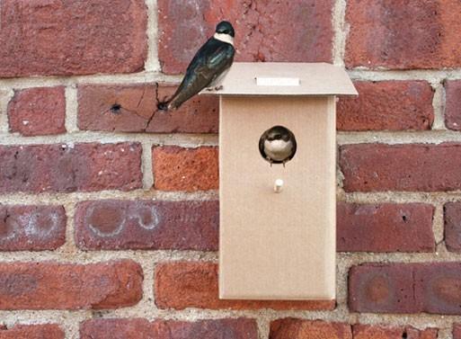Cardboard Birdhouse