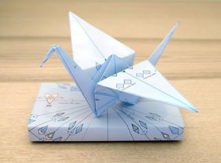 Origami Wrap
