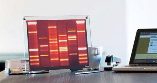 DNA Mini Portrait