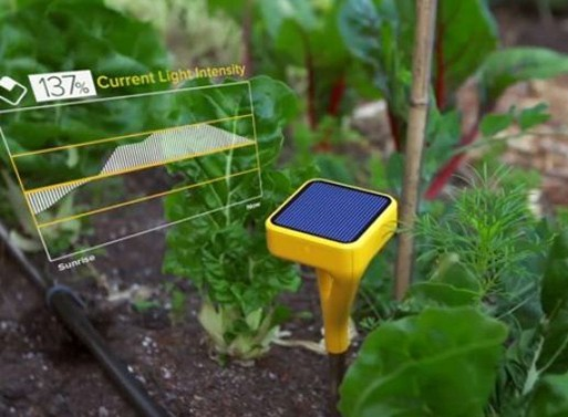 Edyn Garden Sensor Accessories Better Living Through