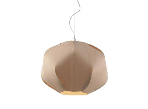 Evolute Suspension Lamp
