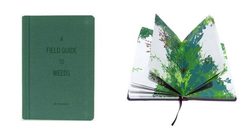 A Field Guide To Weeds, Kim Beck