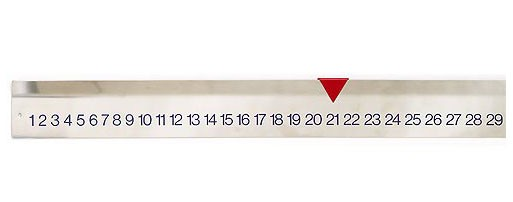 Folle Wall Calendar