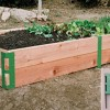 Garden Box Josaelcom Gardening: Wifes Vegetable Box Gardens