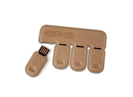 Gigs 2 Go USB Flash Drive