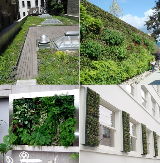Green Roofs/Wall Panels