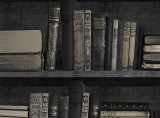 Dark Bookcase Wallpaper
