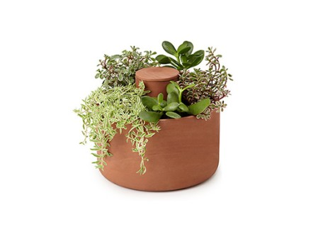 Self Watering Planter by Joey Roth