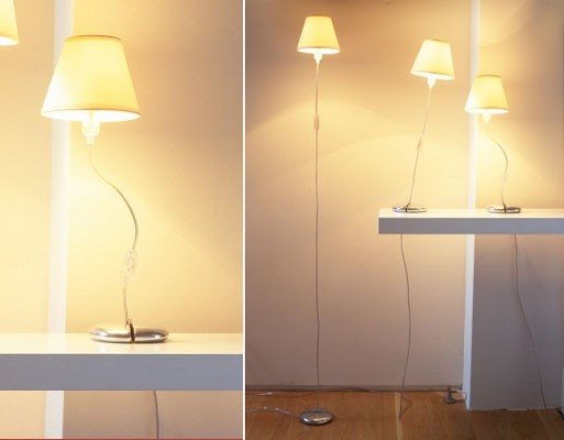 Kind of Magic Floor and Table Lamp by Black + Blum