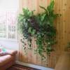 Living Wall Planter — ACCESSORIES -- Better Living Through Design