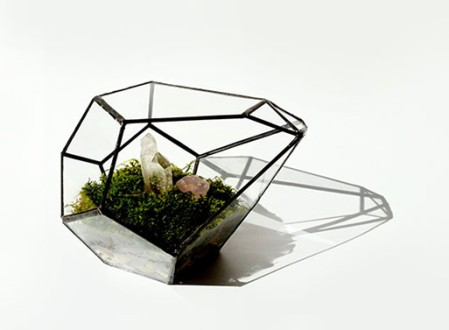 Geometric Terrariums
