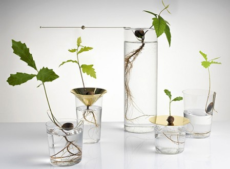 Floating Forest by Michael Anastassiades
