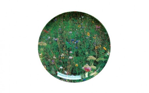 Meadow Plate by Ella Doran Design Ltd