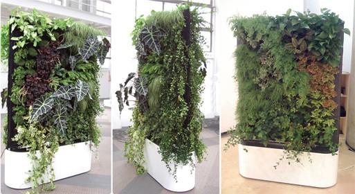 Modular Mobile Plant Wall