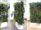 Modular Mobile Plant Wall