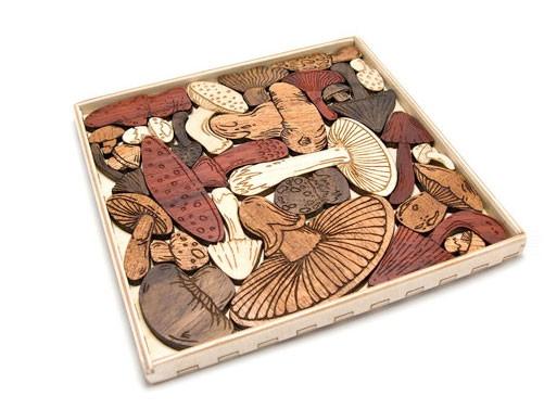 Mysterious Mushroom Puzzle