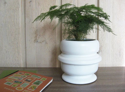 Paige Russell + Fossil Planter