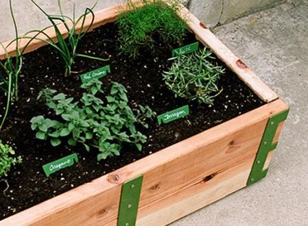 Patio Garden Planter