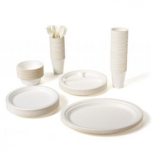 Biodegradable Plates, Cups + Utensils