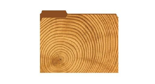 Filex Wood Spiral Folder