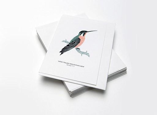 Small Bird Card Set by Fanny Shorter