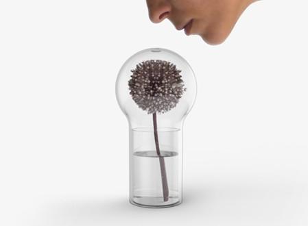 Livada Fragrance Vase