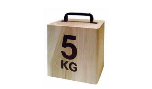 5kg Doorstop