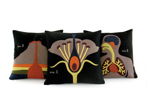 Science Project Pillows